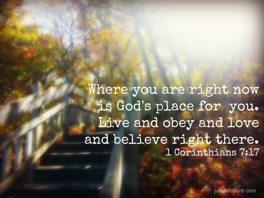 1 Corinthians 7 17 msg