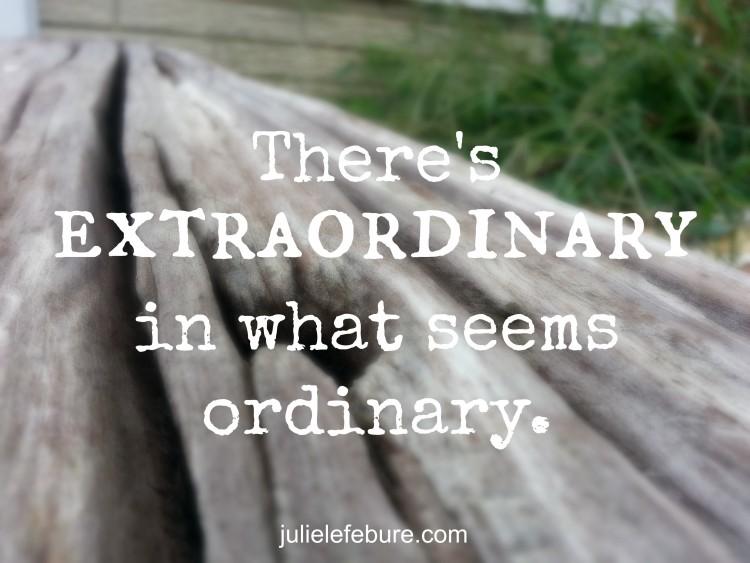 The Extraordinary Not Ordinary Life