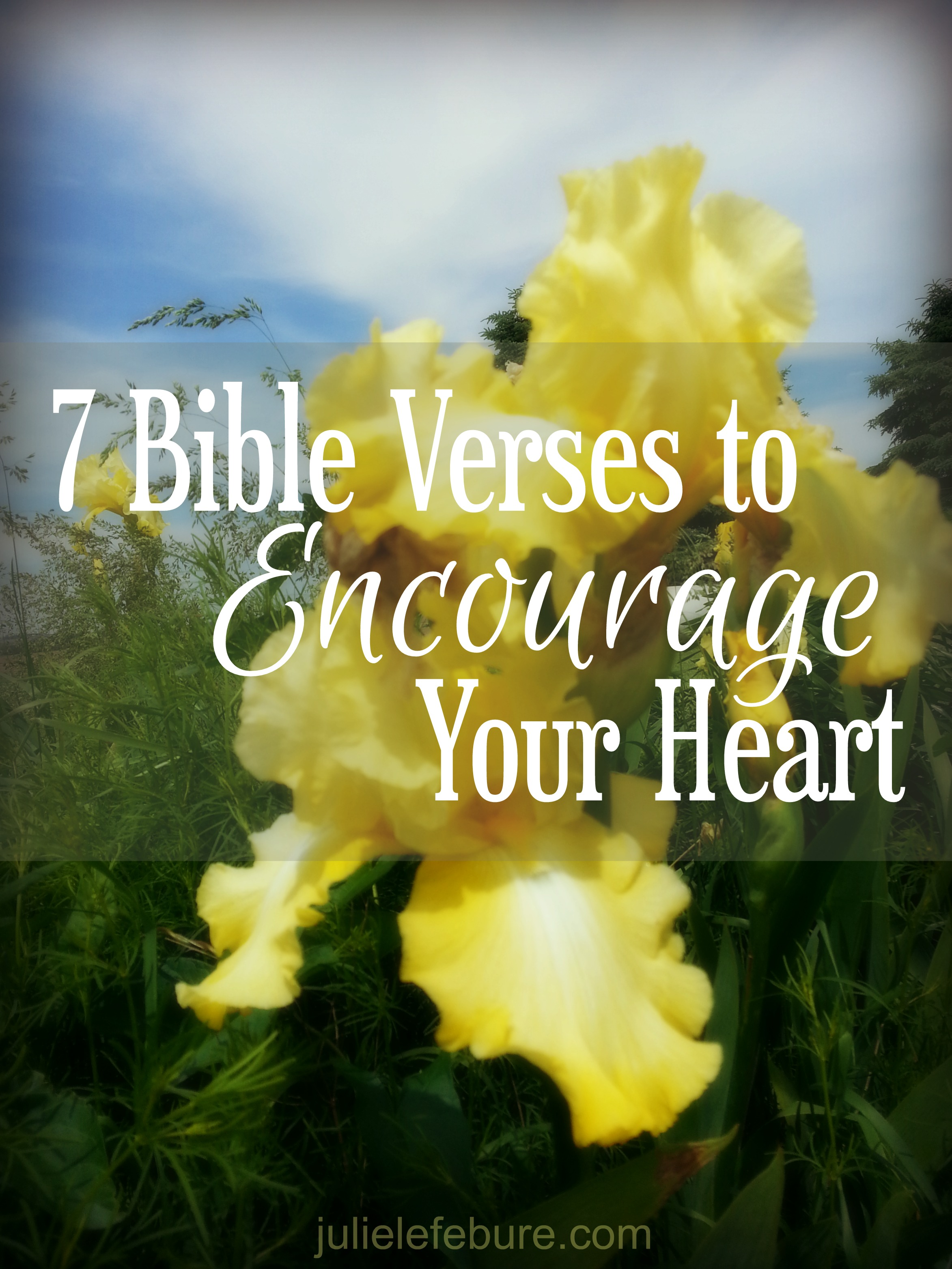 7 Bible Verses To Encourage Your Heart Julie Lefebure