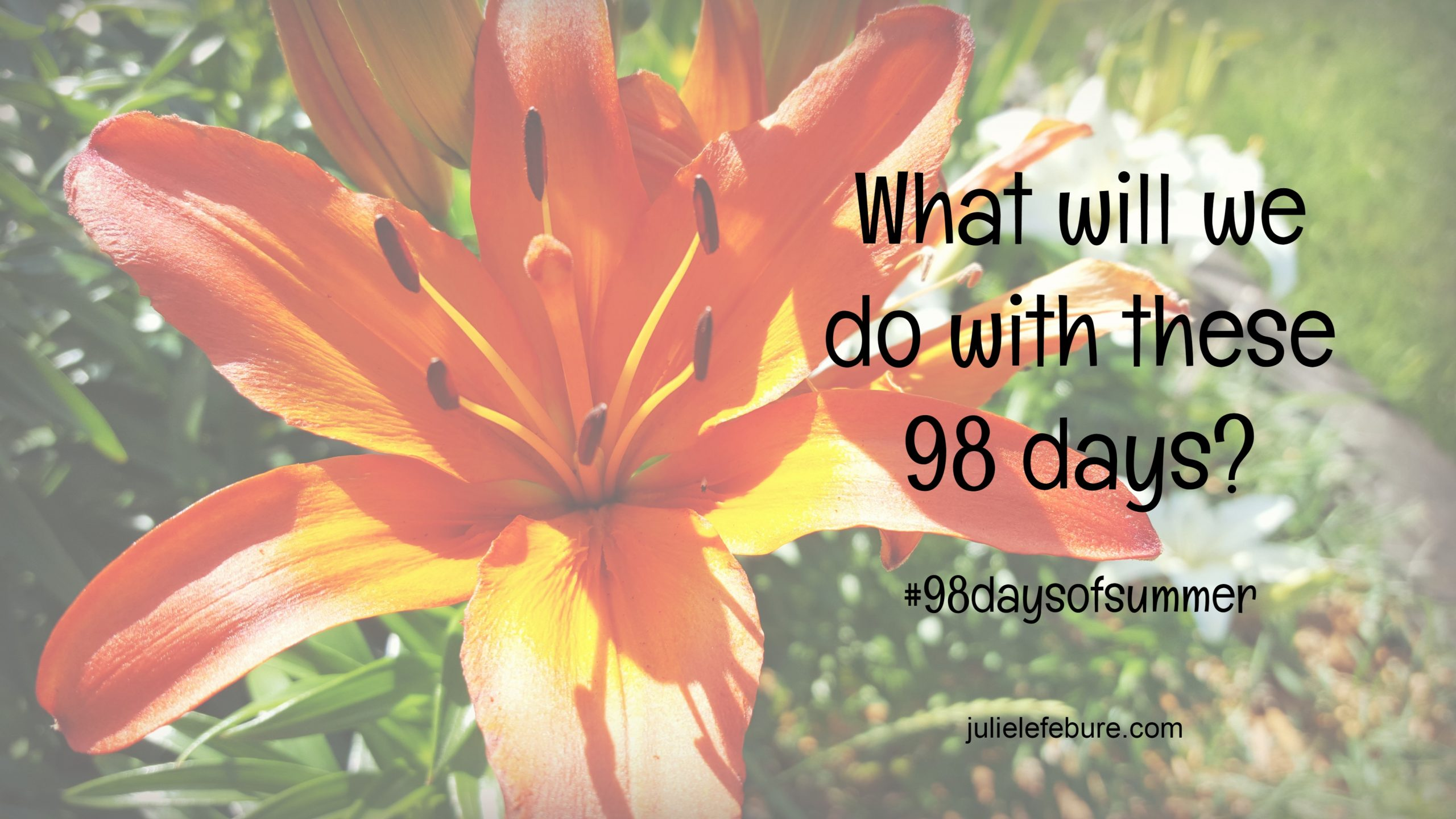 What Will We Do With These 98 Days? #98daysofsummer