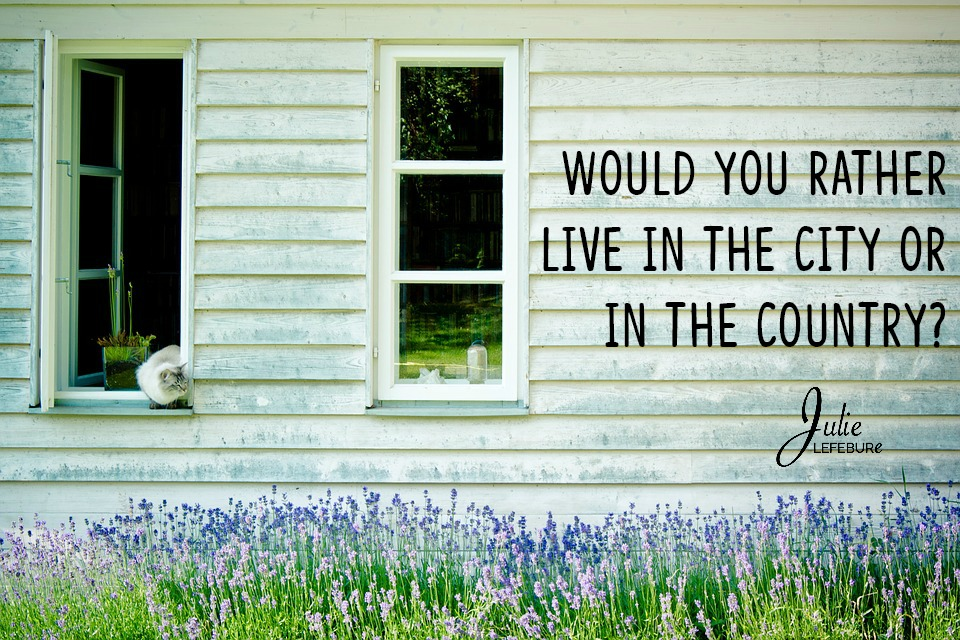 Would you rather live in the city or the country?