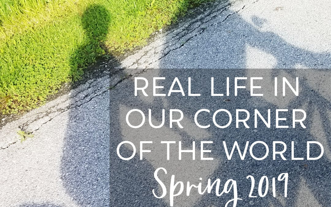 Real Life In Our Corner Of The World – Spring 2019