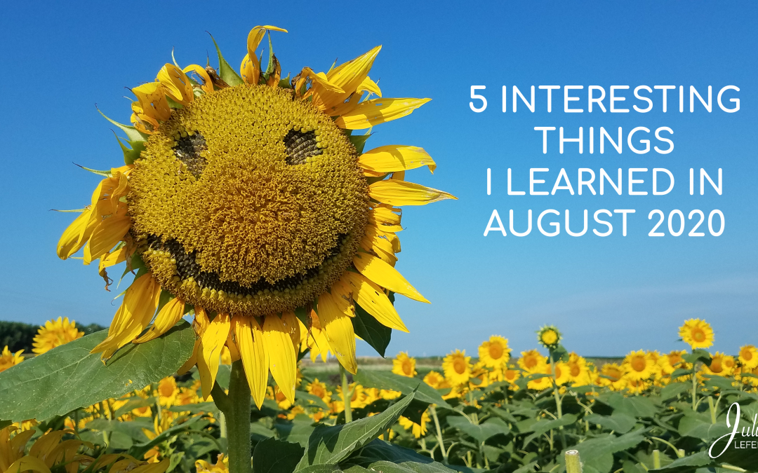 5 Interesting Things I Learned In August 2020