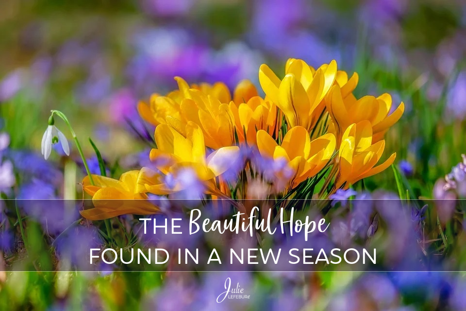 The Beautiful Hope Found In A New Season
